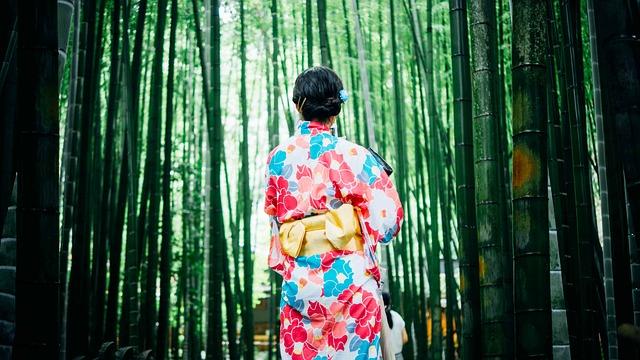 bamboo-trees-1853316_640