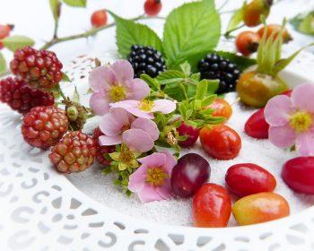 berries-2665250_640