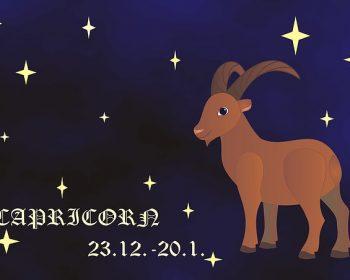 capricorn-1505267_640