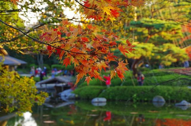 early-autumn-2235485_640