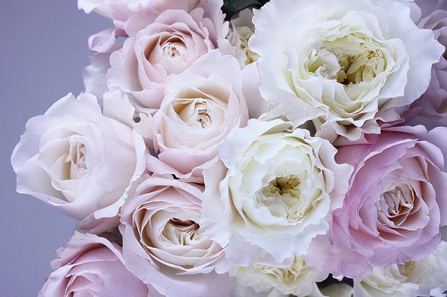 flower-1522260_640