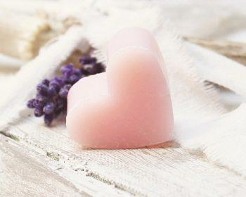 lavender-2430927_640
