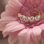 love-3388622_640